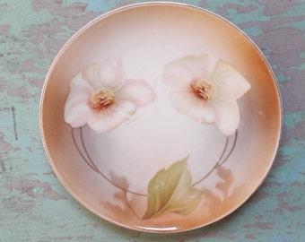 Darling Hand Painted Vintage German Floral Plate!