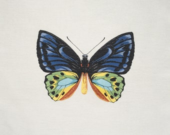 """Square By Design®-Butterfly 25"""" Woven Square"""