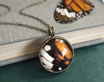 Monarch Butterfly Wing Necklace - Mori Girl - Botanical Woodland - Real - Pressed - Resin Glass