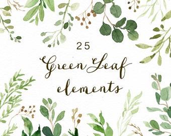 Watercolor Green Leaf Elements/Greenery/Eucalyptus/Wild Leaf/Spring/Green
