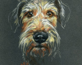 Soft pastel « sketch style1 » portrait of your animal (18 X 24 cm) / Portrait pastel sec style croquis 1» de votre animal (18 X 24 cm)