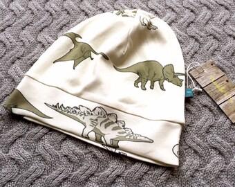 READY TO SHIP dinosaur beanie hat, baby beanie, toddler beanie, dinosaurs, toddler hat, organic, baby clothes