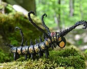 Caterpillar Brahmaea