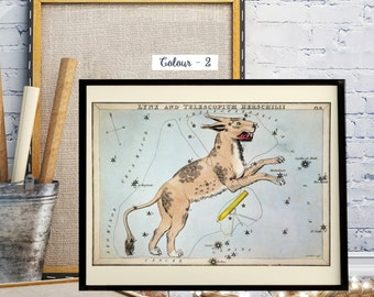 The constellations Lynx and Telescopium Herschilii, Astronomical chart showing a lynx and a telescope forming the constellations.
