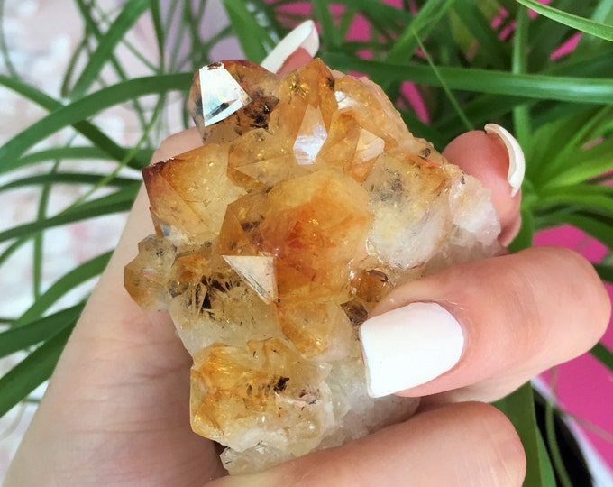 Citrine Crystal Cluster w/ Reiki Perfect for Healing, Chakras, Meditation