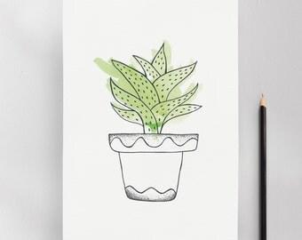 Cereus Cactus Illustration Art Print