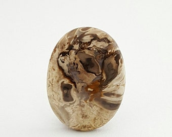 Petrified Palm Wood Root Fossil Cabochon