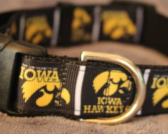 "University of Iowa Hawkeye Dog Collar - Side Release Buckle (1"" Width) - Martingale Available"