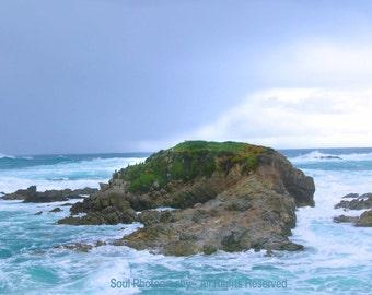 Photo Poster (withOUT verse) Ocean California Bird Rocky Coast