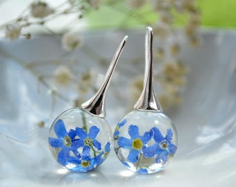 Real forget me not earrings - Real forget me not resin earrings - silver plated hooks earrings - flower resin jewelry