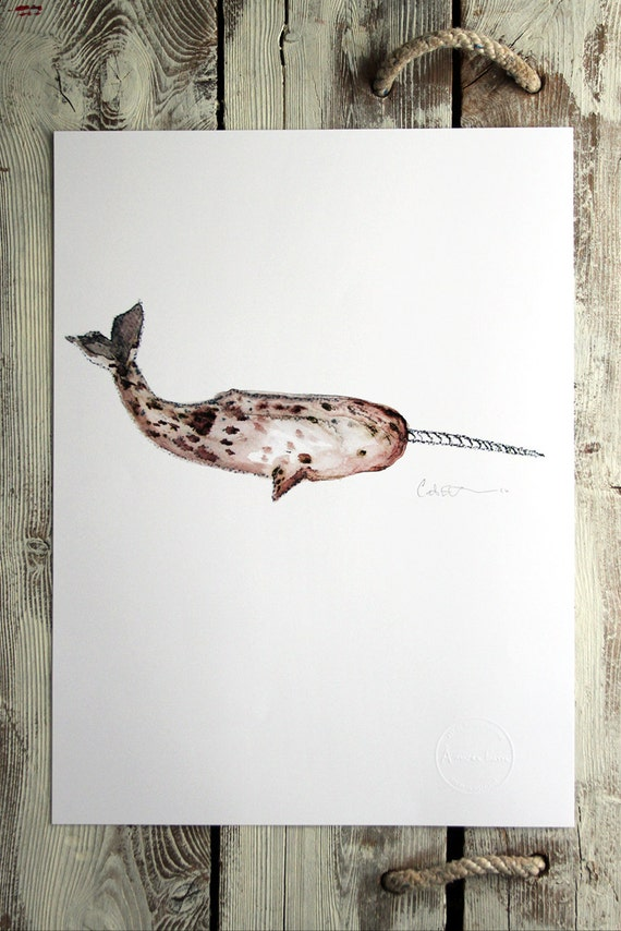 Watercolor print - NARWHAL