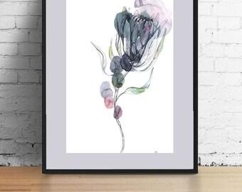 Watercolors painting / Protea / Watercolor flower / Original drawing