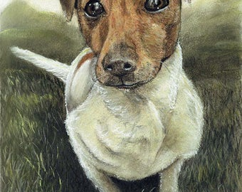 Custom Dog Protrait