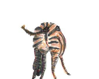 Zebra Buttocks