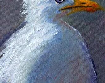 Original Oil Painting, Water Bird, White, Animal Portrait, Creature, Small 4x5 Canvas, Blue Gray, Little, Wall Decor Art, Orange Beak, Eye