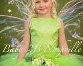 Tinkerbell Inspired Costu...