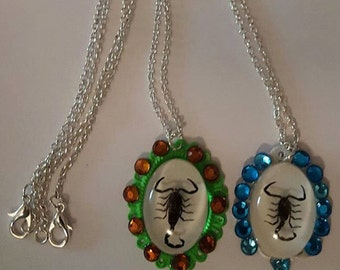 Scorpion, Scorpion necklace, Scorpion jewelry, Taxidermy, Gothic, Insect jewelry, Insect, Oddity,MsFormaldehyde