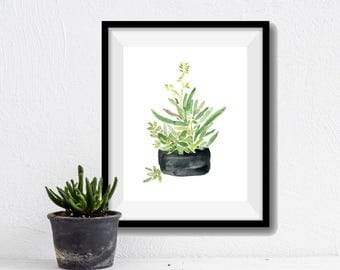 Succulent art print, Succulent in Black planter print, succulent watercolor print, zen art, Green, black, home decor, minimalist art