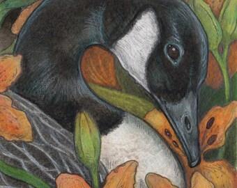 Canada Goose and Lilies...5x7 original art