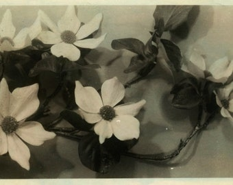 "Vintage Real Photo Postcard ""Pretty Flowers Today"" Antique Hand Tinted RPPC Photo Black & White Photography Paper Ephemera Collectible - 174"