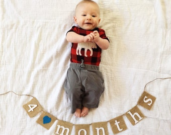 Baby Monthly Milestone Banner - Monthly Milestone Blanket - Baby Month Banner - Baby's First Year - Monthly Baby - Baby Monthly Photo Prop