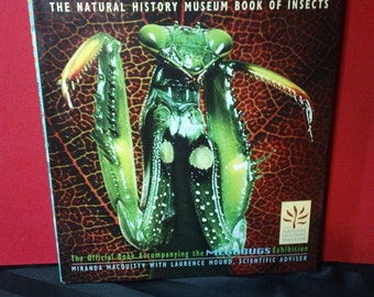 Megabugs ~ The Natural History Museum Book of Insects by Miranda MacQuitty ~ Vintage 1995 Hardcover Insect Nature Entomology Science Book