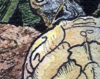 Turtle ACEO Original Watercolor and Ink Painting
