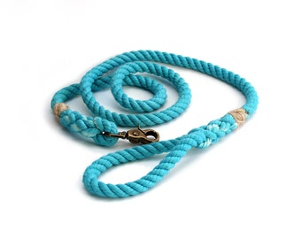 4 FT Aqua Rope Dog Leash