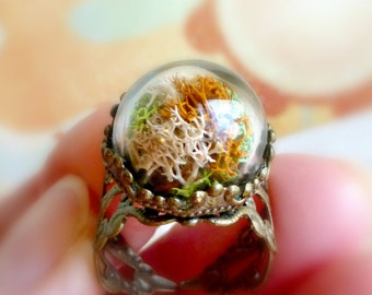 Mini terrarium moss ring , Nature inspired real plant jewelry , Forest woodland jewelry gift , Rustic wedding bridesmaid gift idea