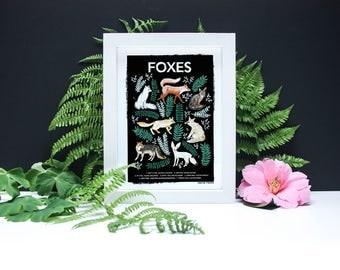 Fox Natural History Print - A4 or A3 Artists Print