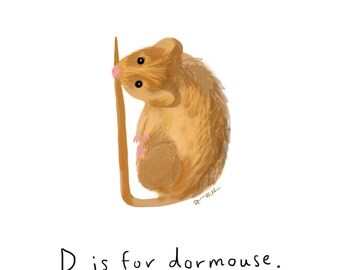 D is for Dormouse Print