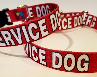 Martingale or Traditional Service Dog Recognition Collars