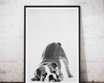 Dog Butt Print, Dog Gift For Him, Dog Gift For Her, Dog Remembrance, Dog Print Poster, Dog Portraits, Dog Paw Decor, Dog Mommy Gift, Doggy