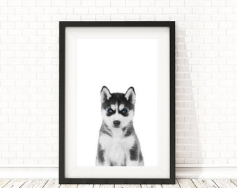 Husky print, Nursery animal print, Woodland animals, Baby animal print, PRINTABLE art, Husky poster, Nursery decor, Nursery art, Animal art