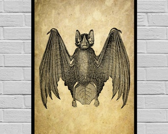 Antique Bat print, Old Paper, Vintage Dictionary page, Bat poster, Vintage Bat Art, Black Bat print V25