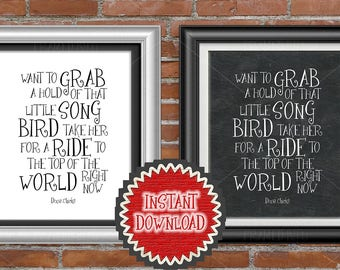Inspirational Dixie Chicks Song Lyrics Patty Griffin Quote Nursery Room Wall Decor Kids Room Art Take Her For A Ride To The Top Of The World
