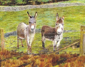 """Art Print: """"Garsdale donkeys"""" - A3 donkey print, animal print, country scene, wall art, donkey painting,from a painting by Dave Marsh"""