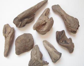Assortment of 8 Driftwood Pieces-Craft Supplies-Driftwood Pieces-Driftwood Supplies-Driftwood-Assortment of Driftwood
