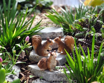 Bushy Tail Squirrels, Set of 3 for Miniature Garden, Fairy Garden