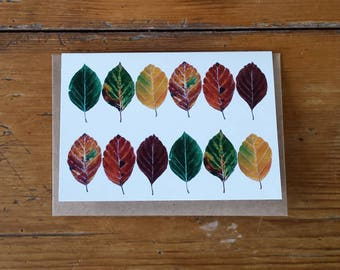 Beech leaves card by Alice Draws The Line featuring the many colours of the beech leaf- blank inside; suitable for any occasion