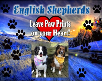 Dogs Leave Pawprints on your Heart Custom T shirt with photo ANY BREED