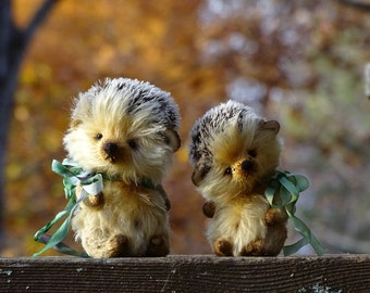 Hedgehog Teddy Flopsy. Artist Teddy Bear friends stuffed toy. Collectible OOAK handmade teddy.