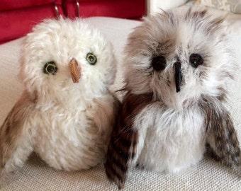 Whoooooootie Owls