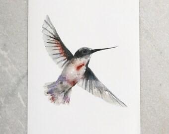 Watercolor 8.5 x 11 print hummingbird