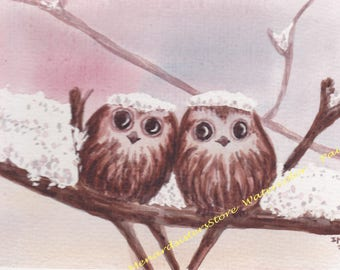 2 lovely owls under the snow-watercolor painting-animals