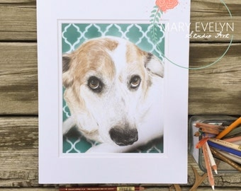 "8"" x 10"" Custom Color Pencil Pet Portrait Drawing with Optional Background"