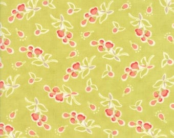 Moda Coney Island Quilt Fabric 1/2 Yard By Fig Tree & Co Limesicle 20282 17