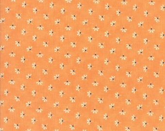 Moda Coney Island Quilt Fabric 1/2 Yard By Fig Tree & Co Orange Sherbert 20283 15