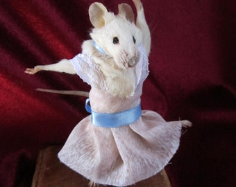 taxidermy mouse dancer taxidermy mouse rat cabinet of curiosity odditties