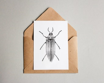 Beetle print A6 wall art, black and white, dotwork, interior wall art, nature print